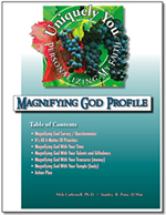 Personalizing My Faith Magnifying God Member Study Guide/Profile